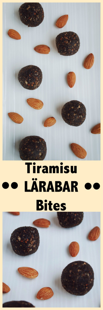 Tiramisu LÄRABAR Bites: A homemade take on the classic snack bar! Dates, almonds, coffee, cocoa, and nutritional yeast make these gluten free and vegan snacks! || fooduzzi.com