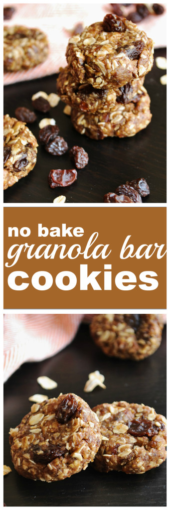 No Bake Granola Bar Cookies
