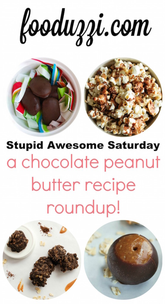Chocolate Peanut Butter Recipe Roundup || fooduzzi.com recipes